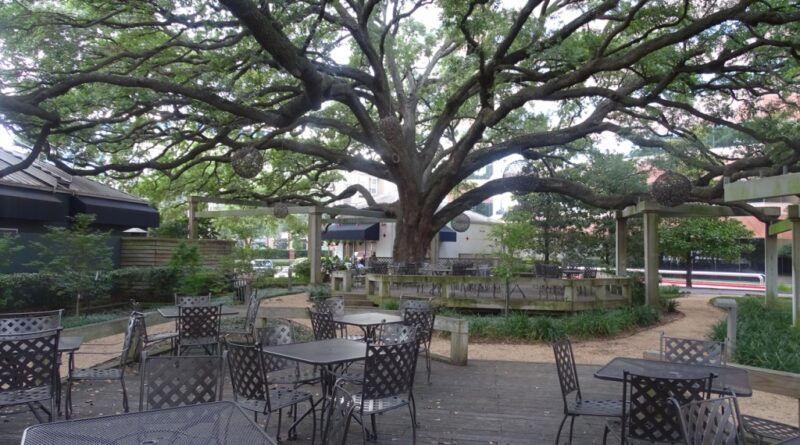 3 patios para disfrutar en Houston con distanciamiento social